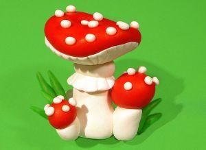 po-deszczu-swietnie-rosna-grzyby-nie-tylko-jadalne