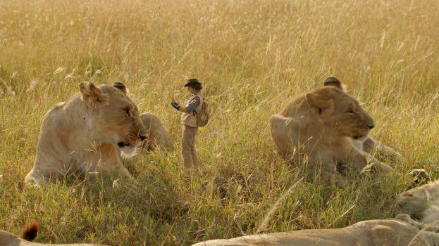 andy-na-safari