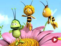 Pszczółka Maja, Wielki, zły skorek