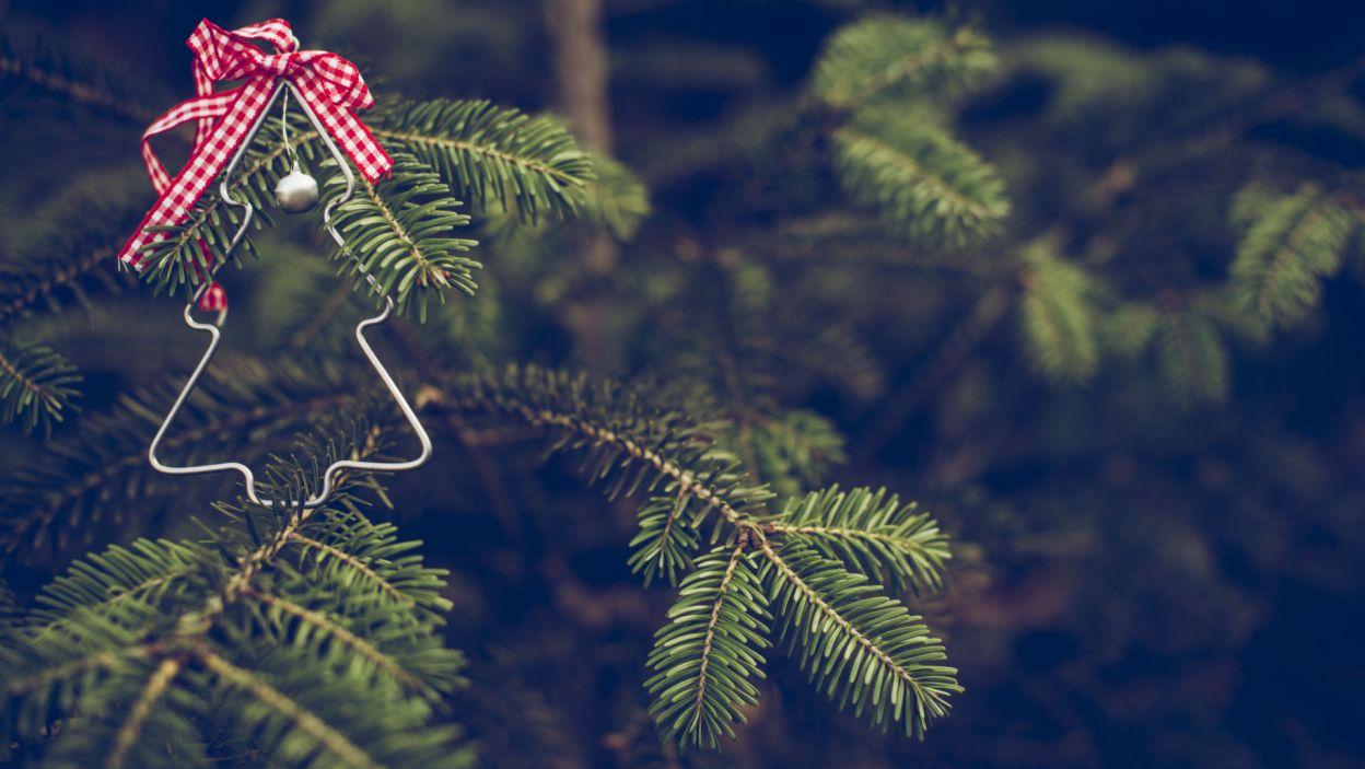 Minimalistom może się spodobać ta skromna, ale nowoczesna, metalowa ozdoba (Fot. Shutterstock)