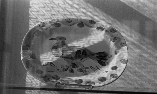Gołąbek pokoju Pabla Picassa – wersja na porcelanie. W auli Politechniki Wrocławskiej pokazano wyroby ceramiczne będące darem artysty dla Polski. Fot. PAP