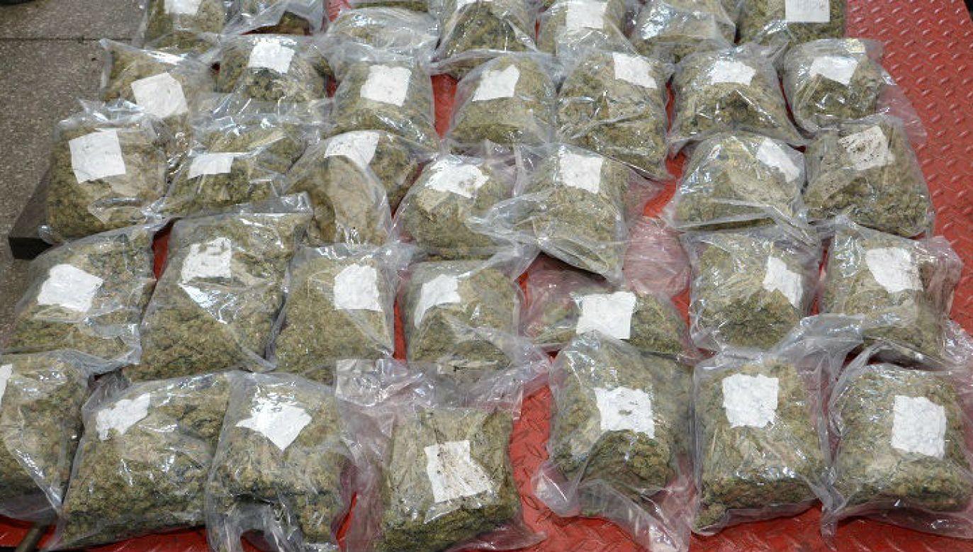 Marihuana, którą próbowano przemycić do Polski w samochodzie osobowym (fot. SG)