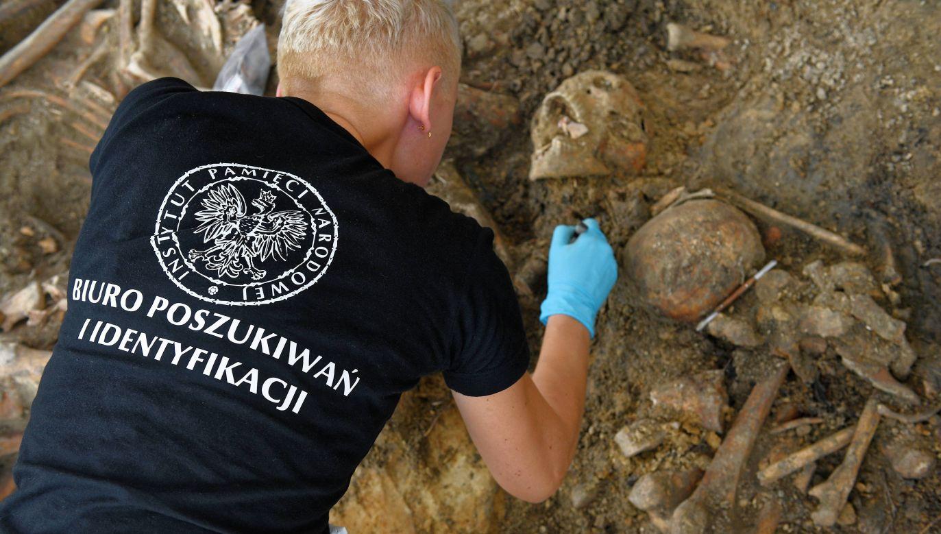 Specjaliści IPN od wielu lat w Polsce, a od ponad dwóch lat także poza granicami kraju, poszukują tajnych miejsc pochówków ofiar zbrodni totalitarnych reżimów (fot. arch.PAP/Marcin Kmieciński)