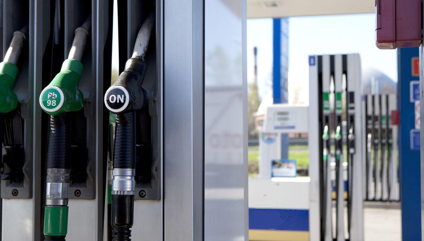 Ceny paliw na stacjach powinny pozostać stabilne (fot. Shutterstock)