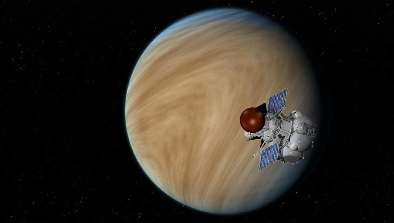 Na Wenus może albo mogło znajdować się życie (fot. NASA)
