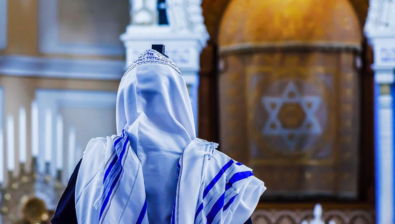 Według tradycjonalistów synagoga w Hamburgu nie była koszerna (fot. Shutterstock/TaliV)