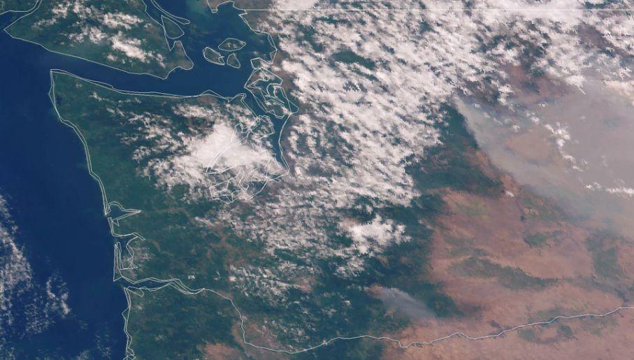Satelitarne zdjęcie rejonu pożarów (fot. activefiremaps.fs.fed.us)