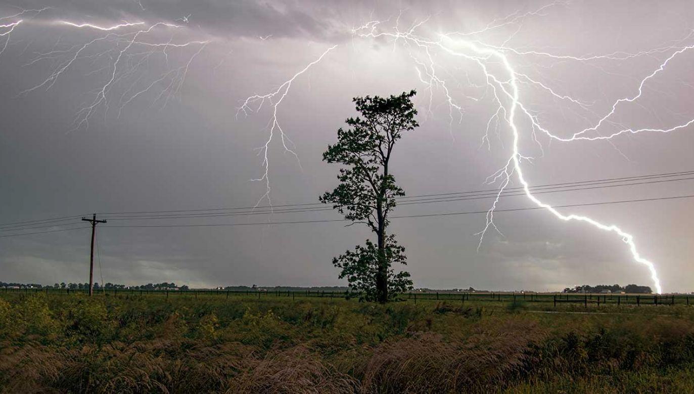 W czasie burzy zawsze bezpieczniej jest w środku – wskazuje RCB (fot. Shutterstock/Steven K Sembach Jr)