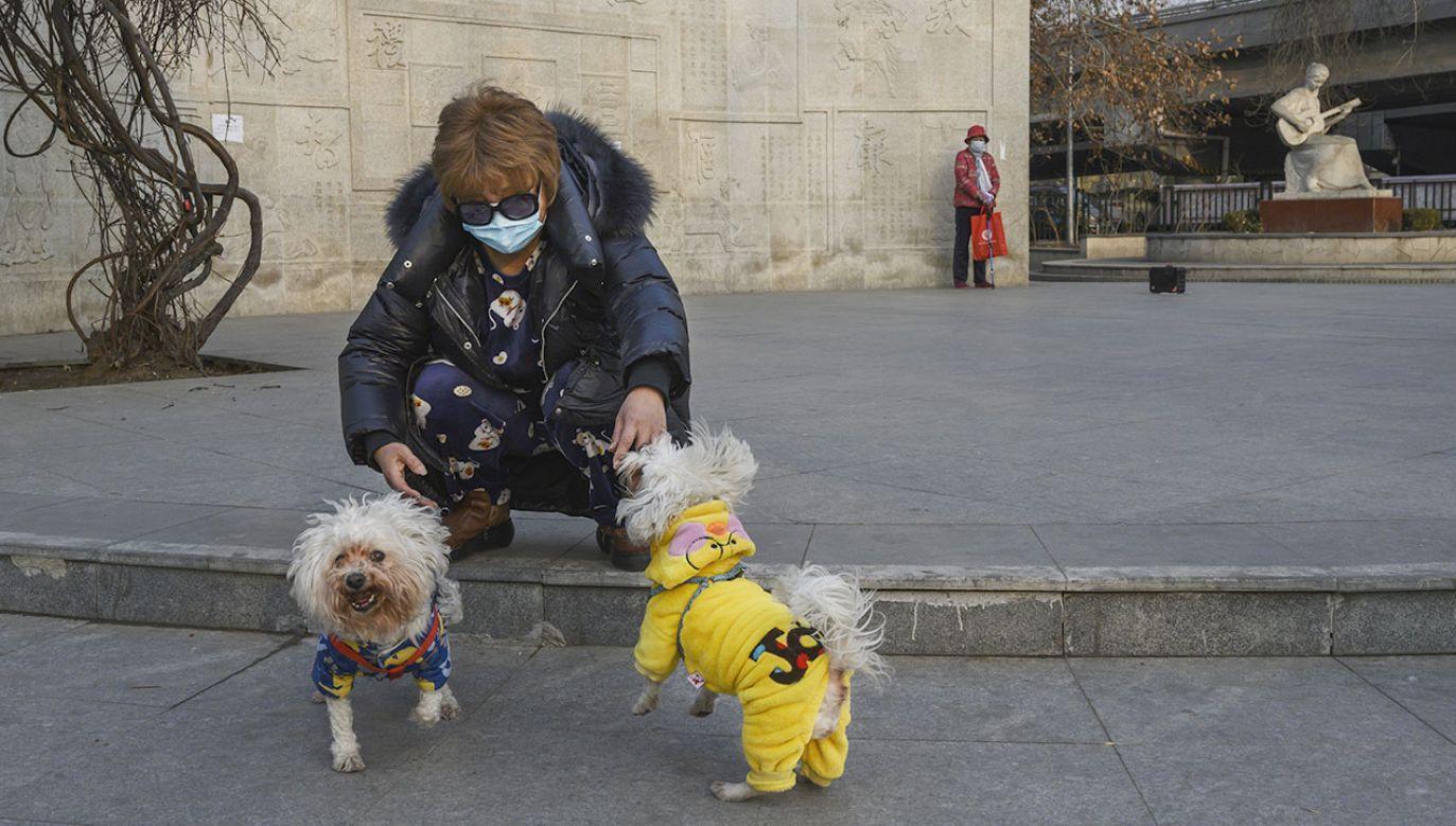 Za złamanie zakazu przewidziano wysoką karę (fot. Kevin Frayer/Getty Images)