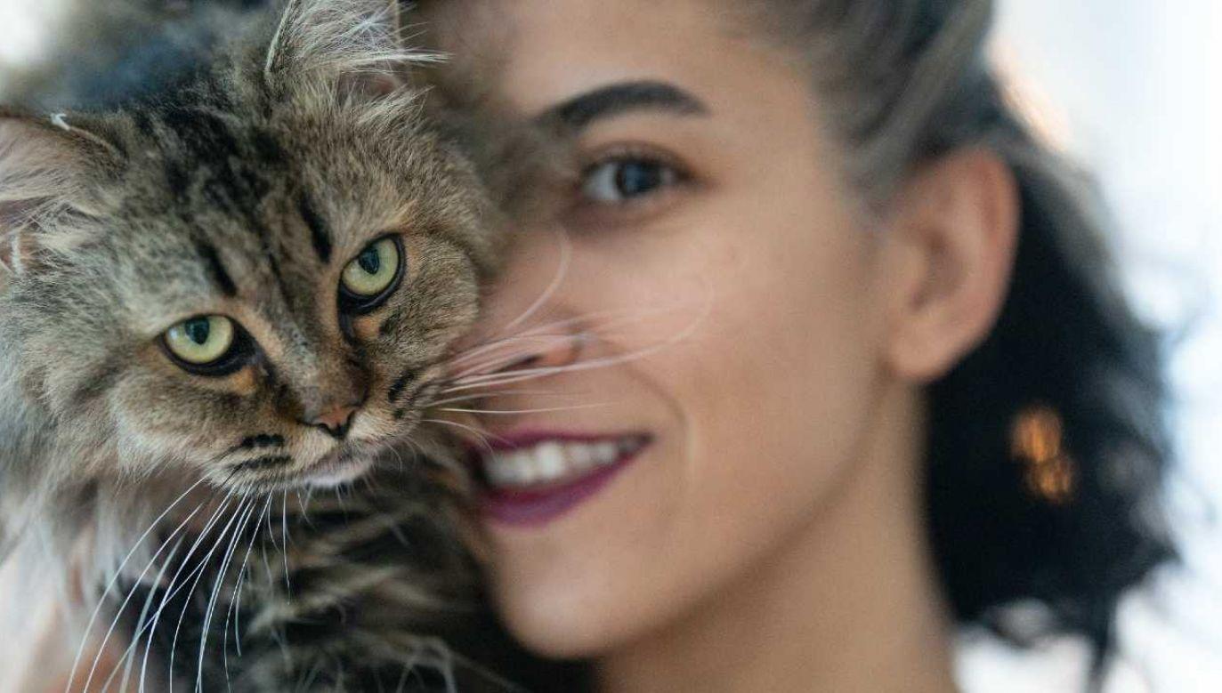 Powolne mruganie oznacza u kotów uśmiech (fot. Pexels)