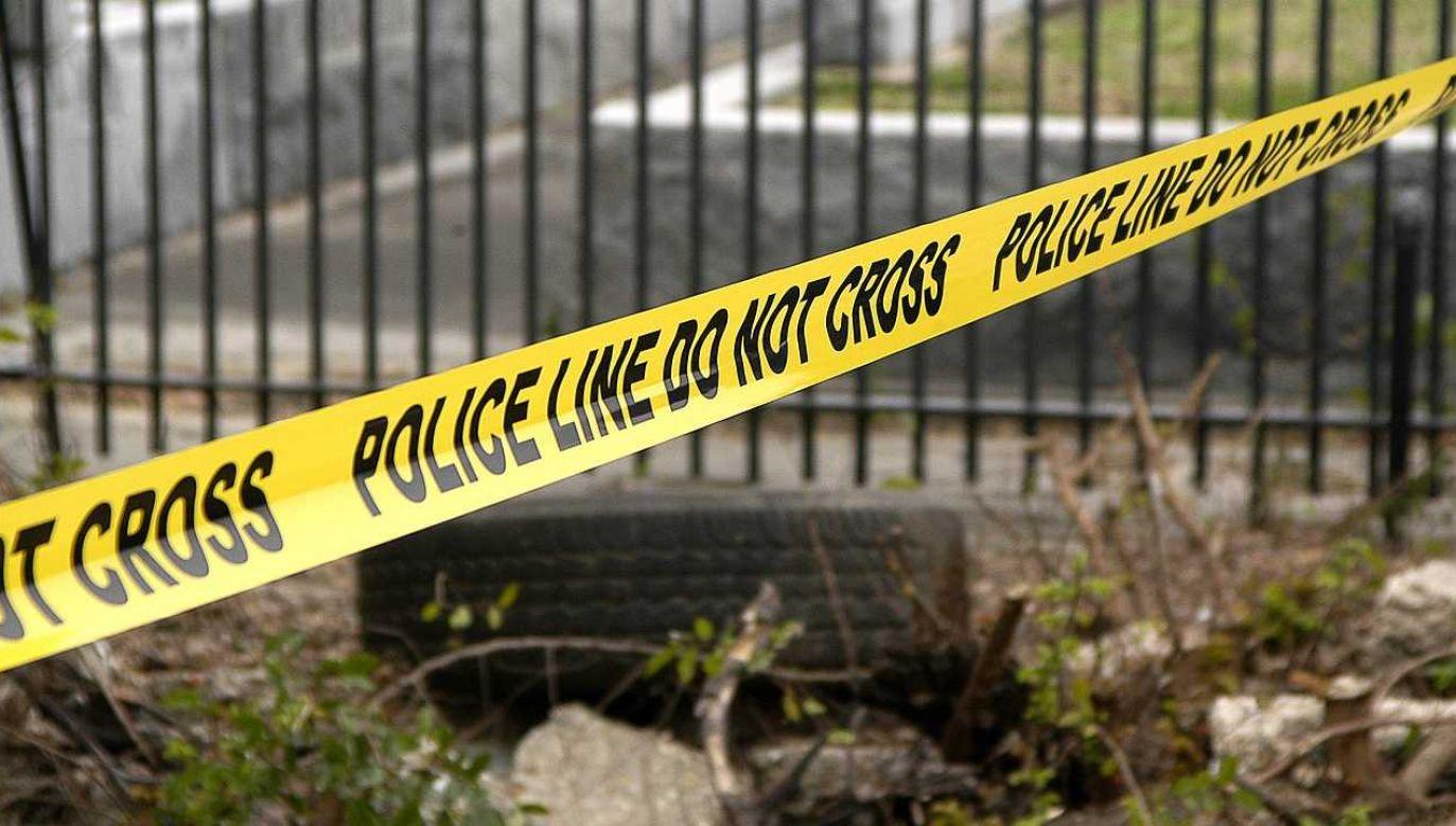 Chicago zmaga się z falą przemocy (fot. Pixabay)