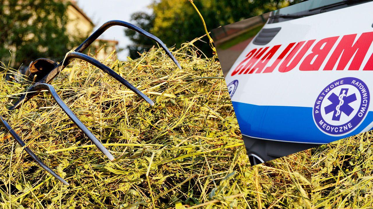 Widły raniły mężczyznę w głowę (fot. Shutterstock)