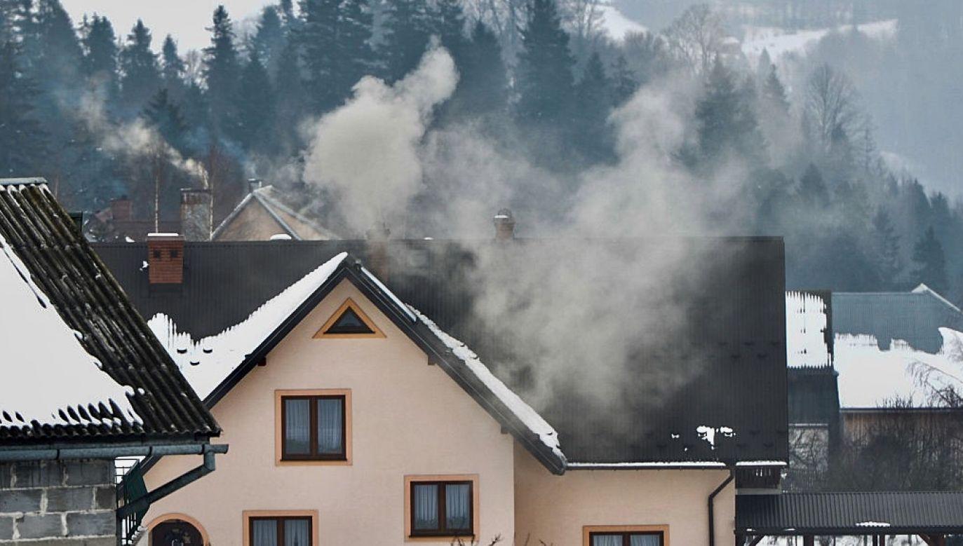 Według badaczy wynalazek może poprawić stan powietrza na zanieczyszczonych obszarach (fot. Artur Widak/NurPhoto via Getty Images)