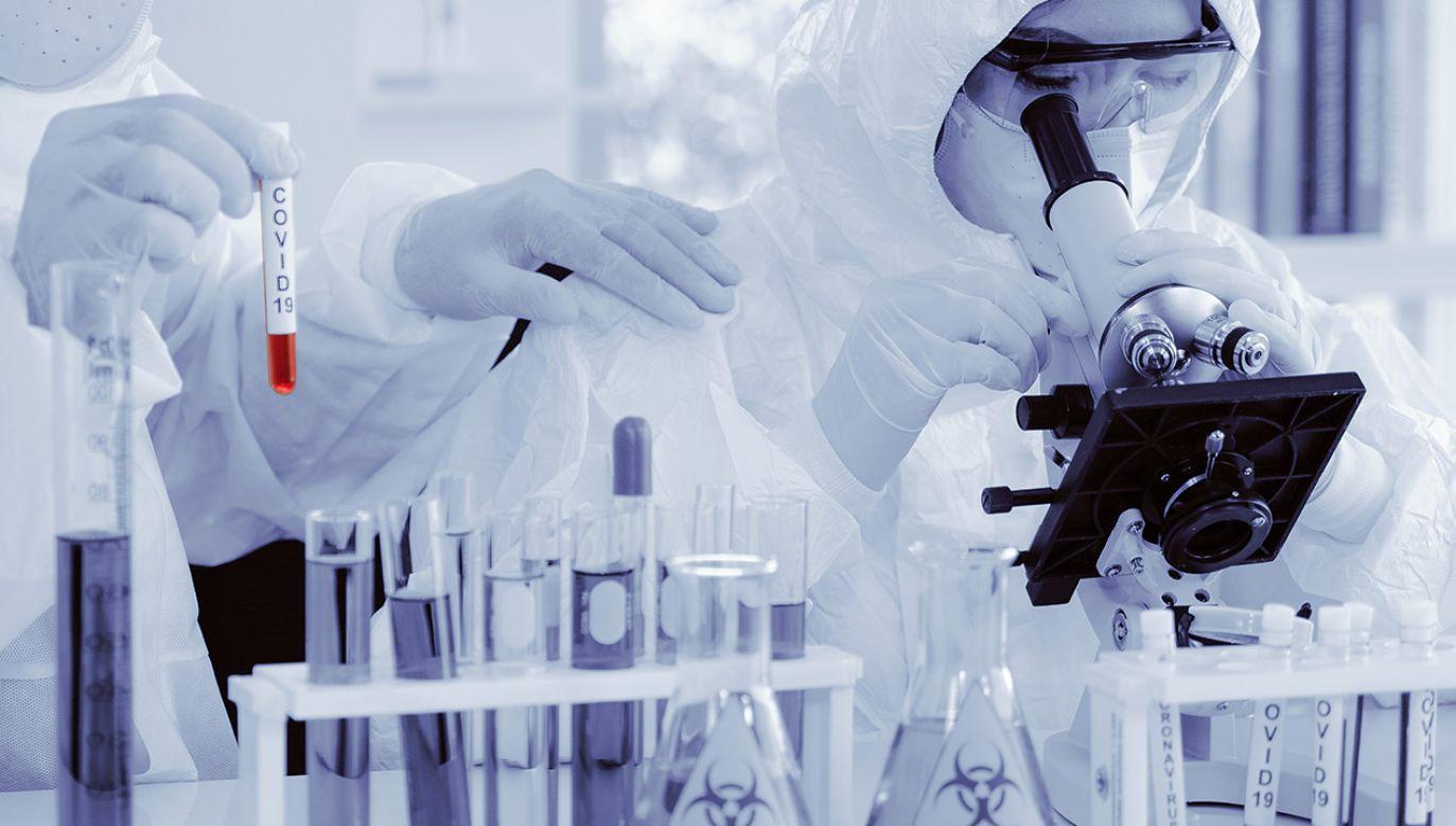 """""""Badania nad takimi mutacjami muszą stać się przedmiotem debaty publicznej"""" (fot. Shutterstock/Mongkolchon Akesin)"""