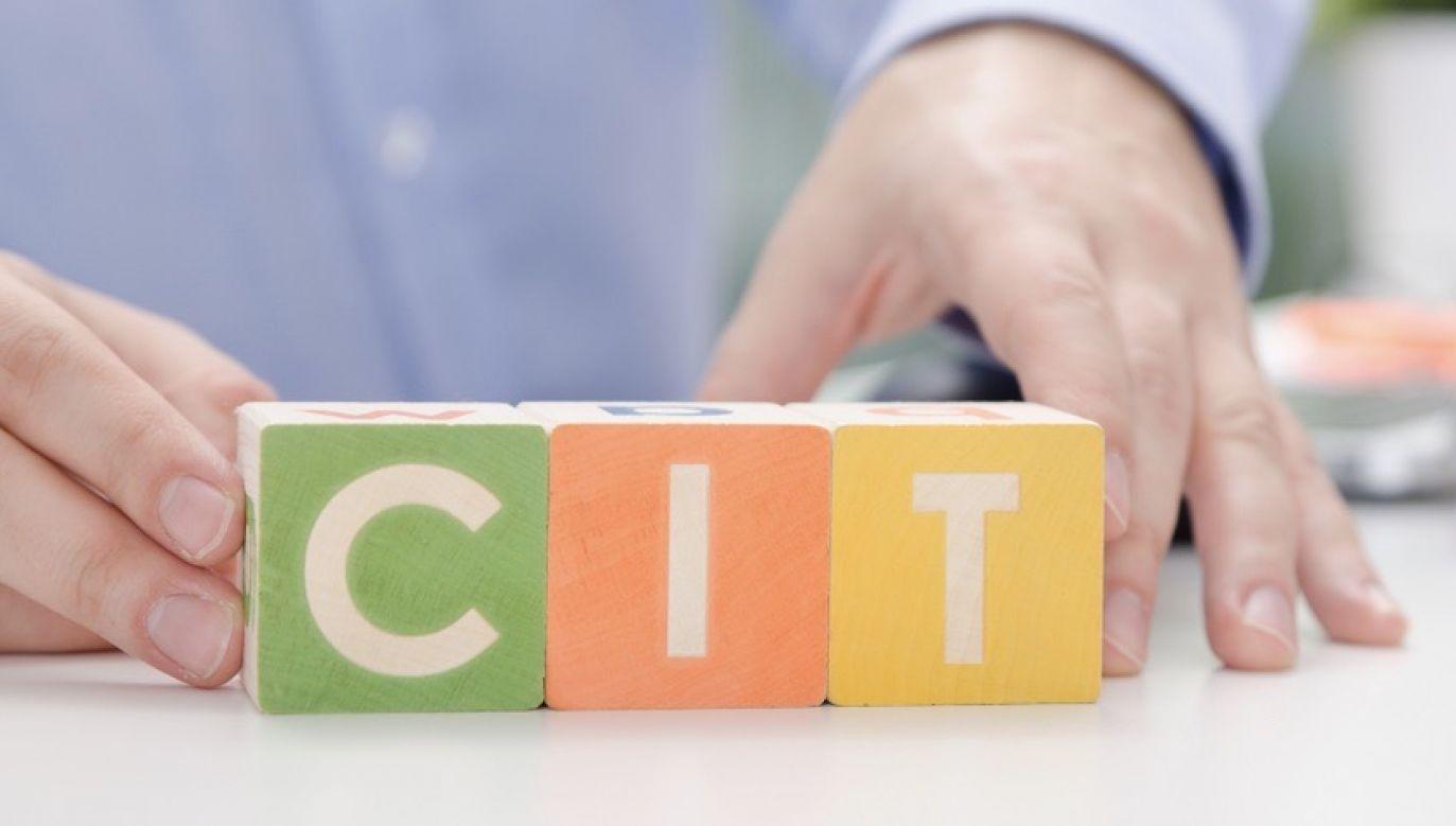 Trwają prace nad nowelizacją ustawy o CIT (fot. Shutterstock)