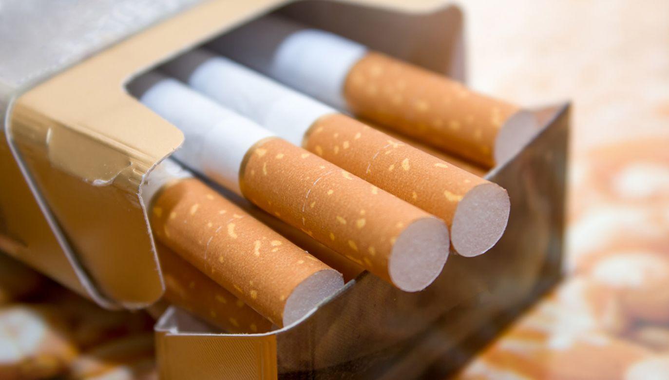 Sejm zgodził się na 10 proc. podwyżkę akcyzy na alkohol i produkty tytoniowe (fot. Shutterstock/ Koloj)