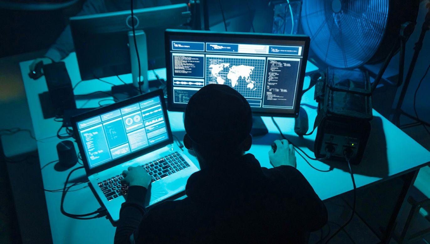 Jak dbać o bezpieczeństwo w sieci (fot. Shutterstock/Maksim Shmeljov)
