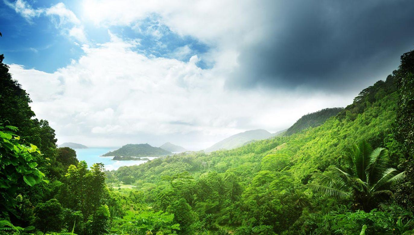 Pod Ziemią ma spoczywać gęsta część nieznanego świata (fot. Shutterstock/Iakov Kalinin)