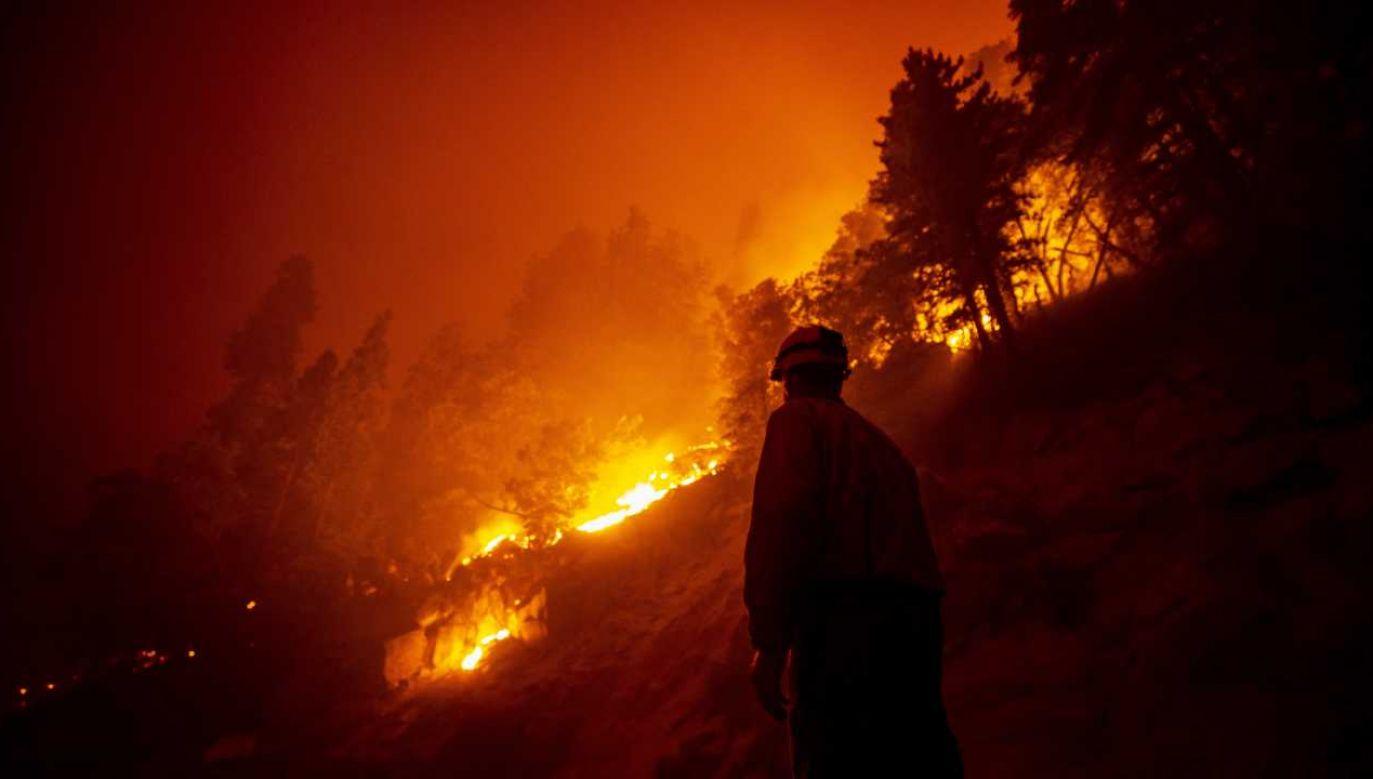 Oregon zmaga się z gigantycznymi pożarami (fot. PAP/EPA/ETIENNE LAURENT)