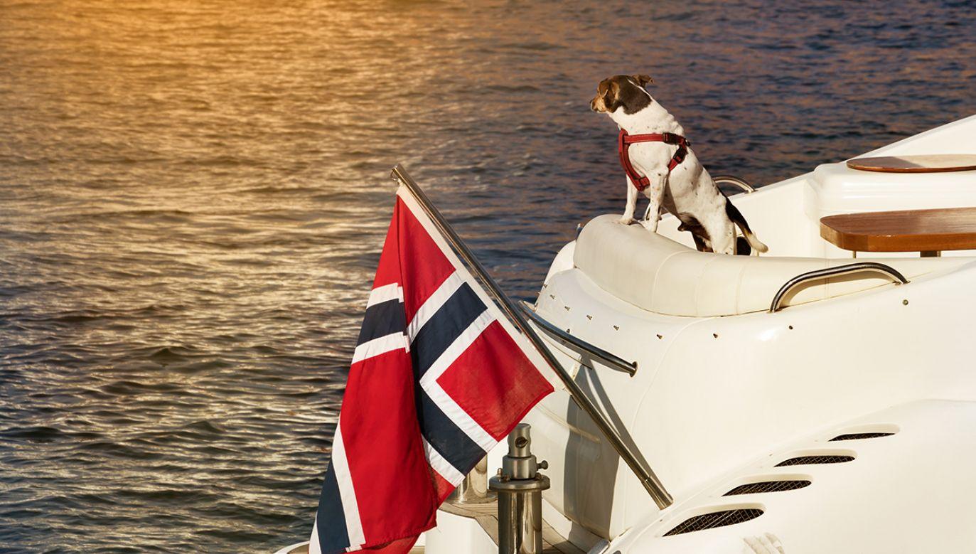 Władze wydały zalecenie dla właścicieli psów (fot. Shutterstock/RUBEN M RAMOS)
