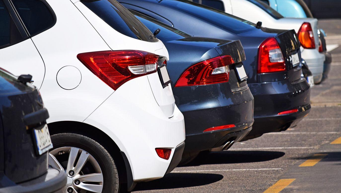 Rocznie z tytułu opłat za parkowanie w strefie do budżetu miasta wpływa ok. 55 mln zł (fot. Shutterstock/Laszlo66)