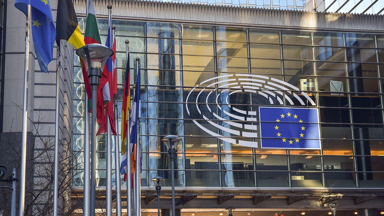 Zdaniem przedstawicieli Węgier w PE, podczas głosowania zabrakło 14 głosów (fot. Shutterstock/Cineberg)