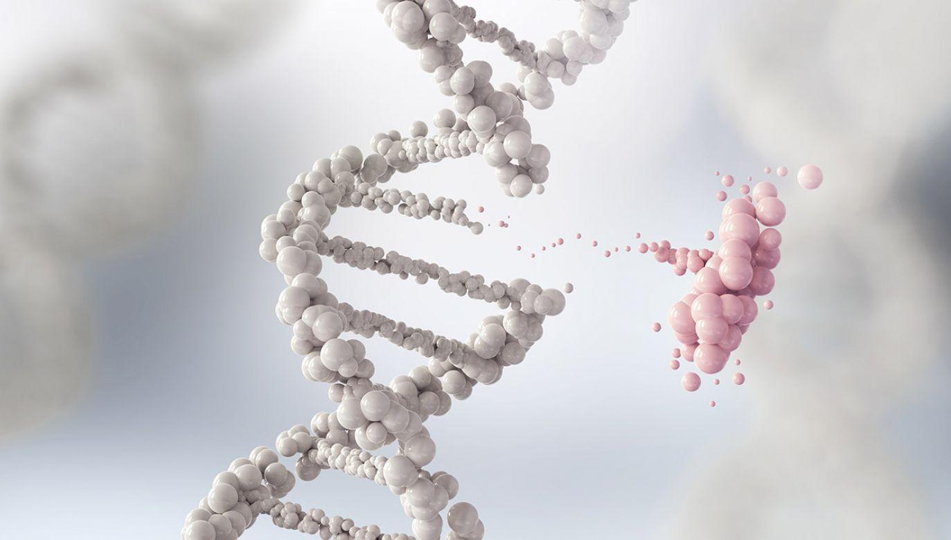 Choroby genetyczne wywołuje aż 75 tys. mutacji (fot. Shutterstock/Anusorn Nakdee)