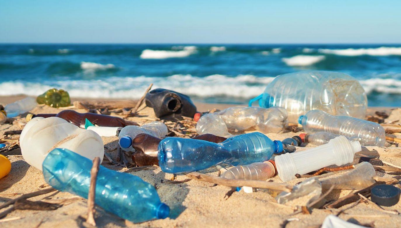 """Od początku """"epoki plastiku"""" czyli lat 50. XX w. na świecie wyprodukowano 6,3 miliarda ton odpadów z tworzyw sztucznych (fot. Shutterstock/Larina Marina)"""