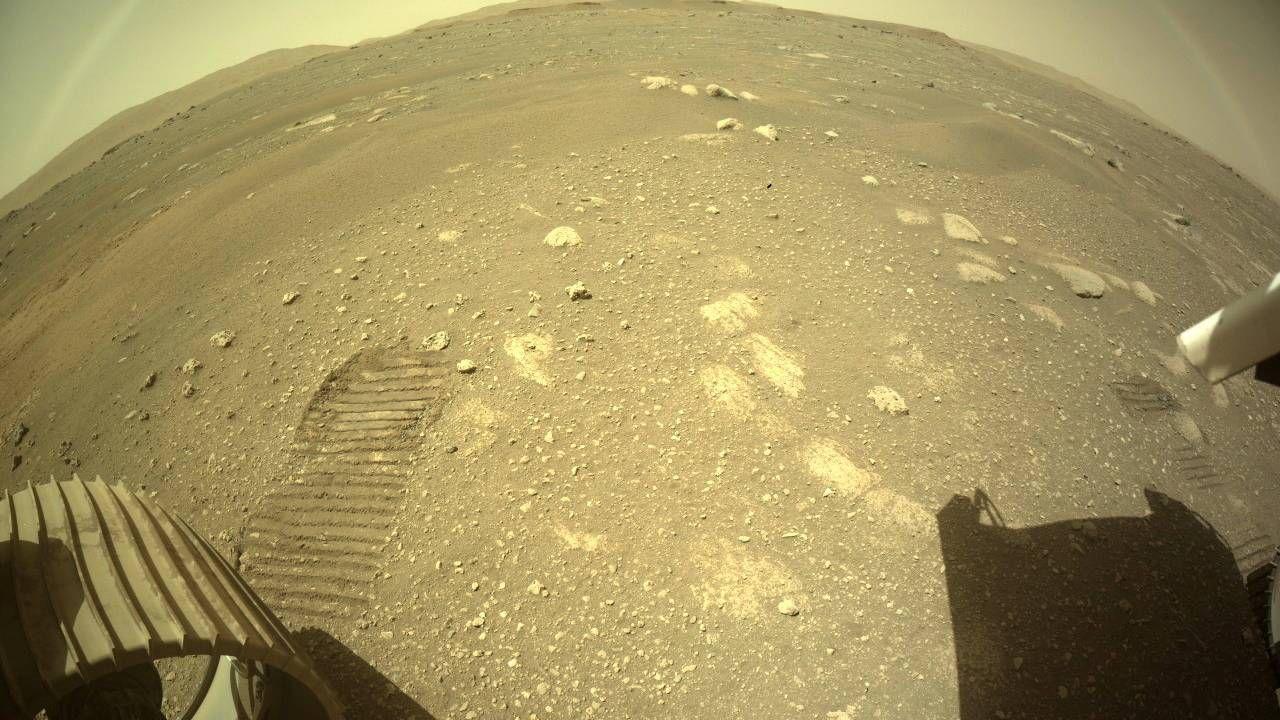 Ślady bieżnika kół łazika pozostawione po pierwszej jeździe na powierzchni Marsa (fot. PAP/EPA/NASA)
