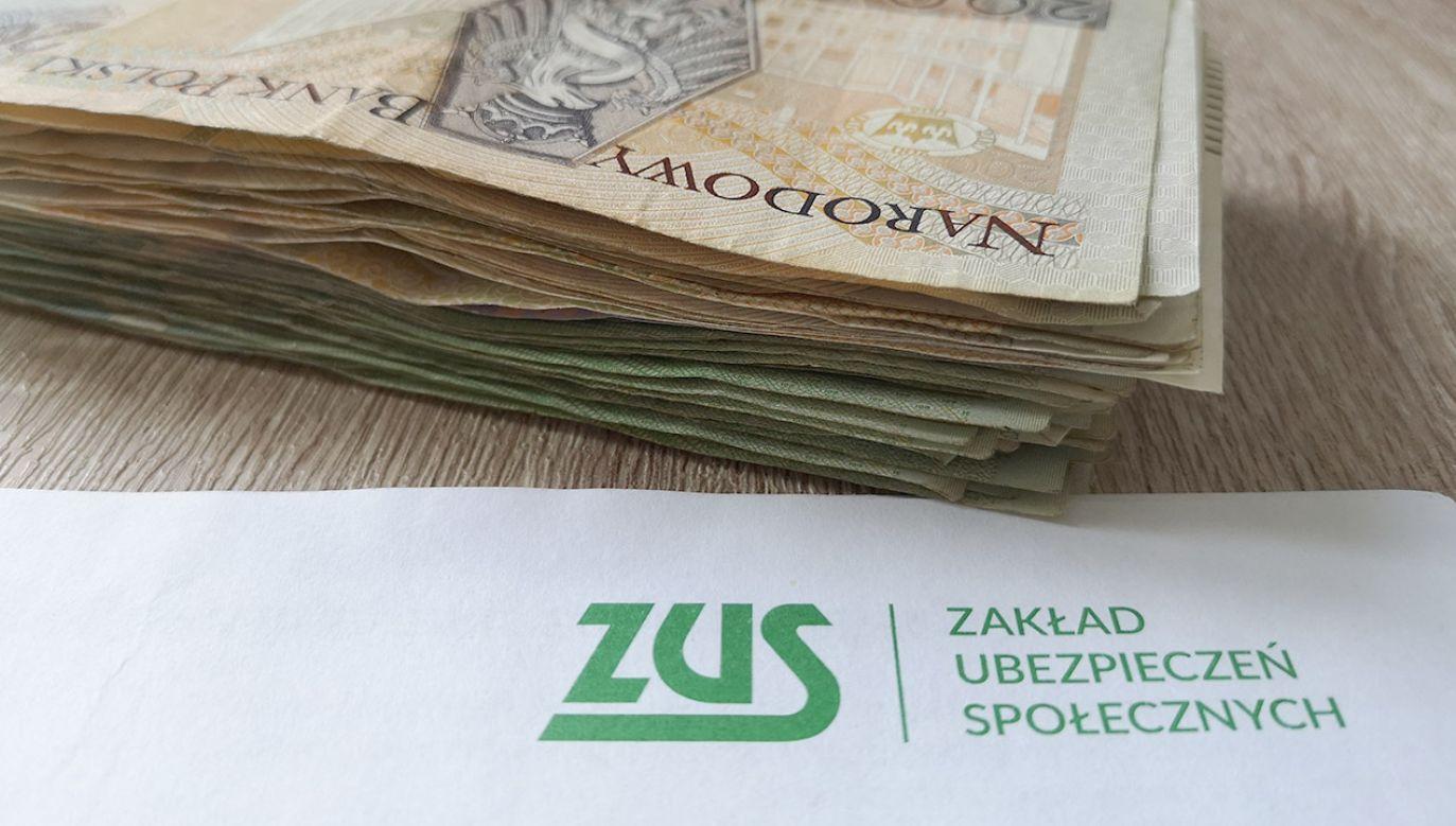 – My w rzeczywistości obniżamy stawkę ZUS – mówi rzecznik rządu (fot. shutterstock/Smyk Photo)