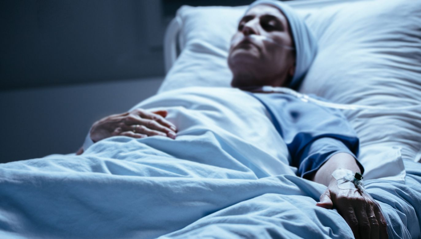 Sasin komentował ataki PO na rząd dotyczące nakładów na onkologię (fot. Shutterstock/Photographee.eu)