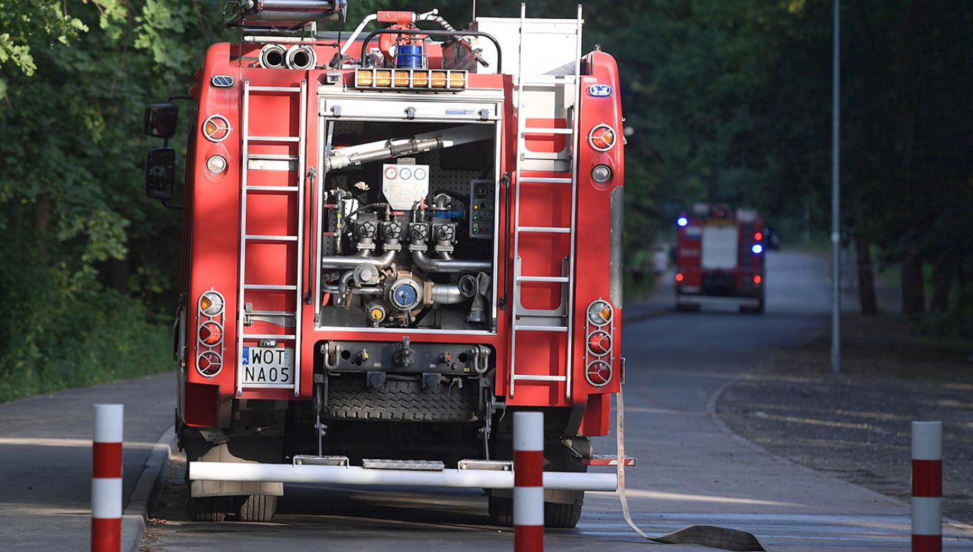 W akcji gaśniczej uczestniczyło łącznie 48 zastępów strażaków (fot. PAP/Marcin Obara, zdjęcie ilustracyjne)