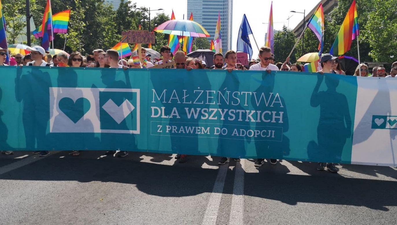 """Jasna deklaracja popierająca adopcję jako przywilej równości małżeńskiej to jeden z postulatów tzw. """"Parady Równości"""" (fot. TVP Info)"""