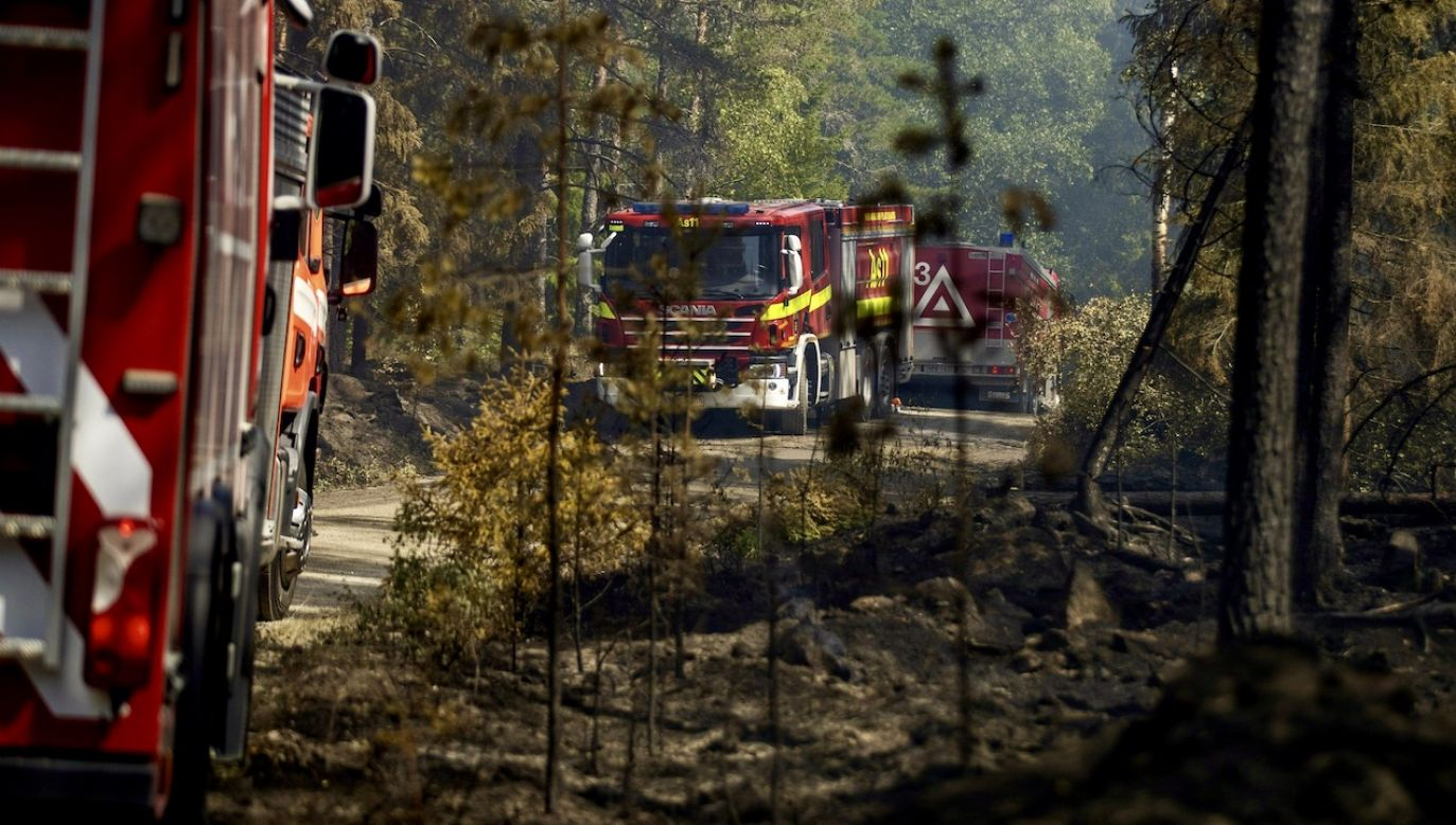 Przyczyny pożaru nie są jeszcze znane (fot. Roni Lehti/Lehtikuva via Reuters, zdjęcie ilustracyjne)