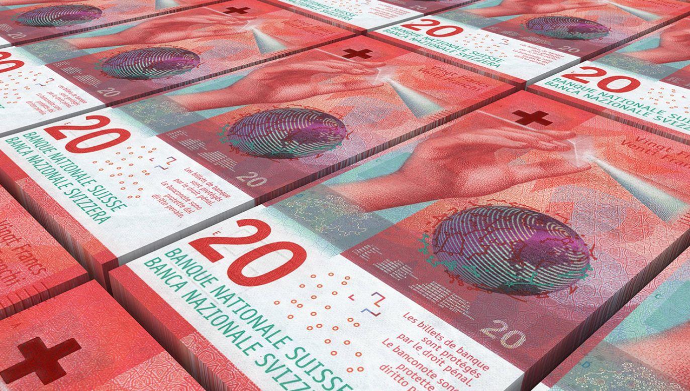 W 2008 r. państwo Dziubakowie wzięli kredyt hipoteczny na 40 lat. Bank dał im kredyt w złotówkach, ale był on indeksowany we frankach szwajcarskich (fot. Shutterstock/ppart)