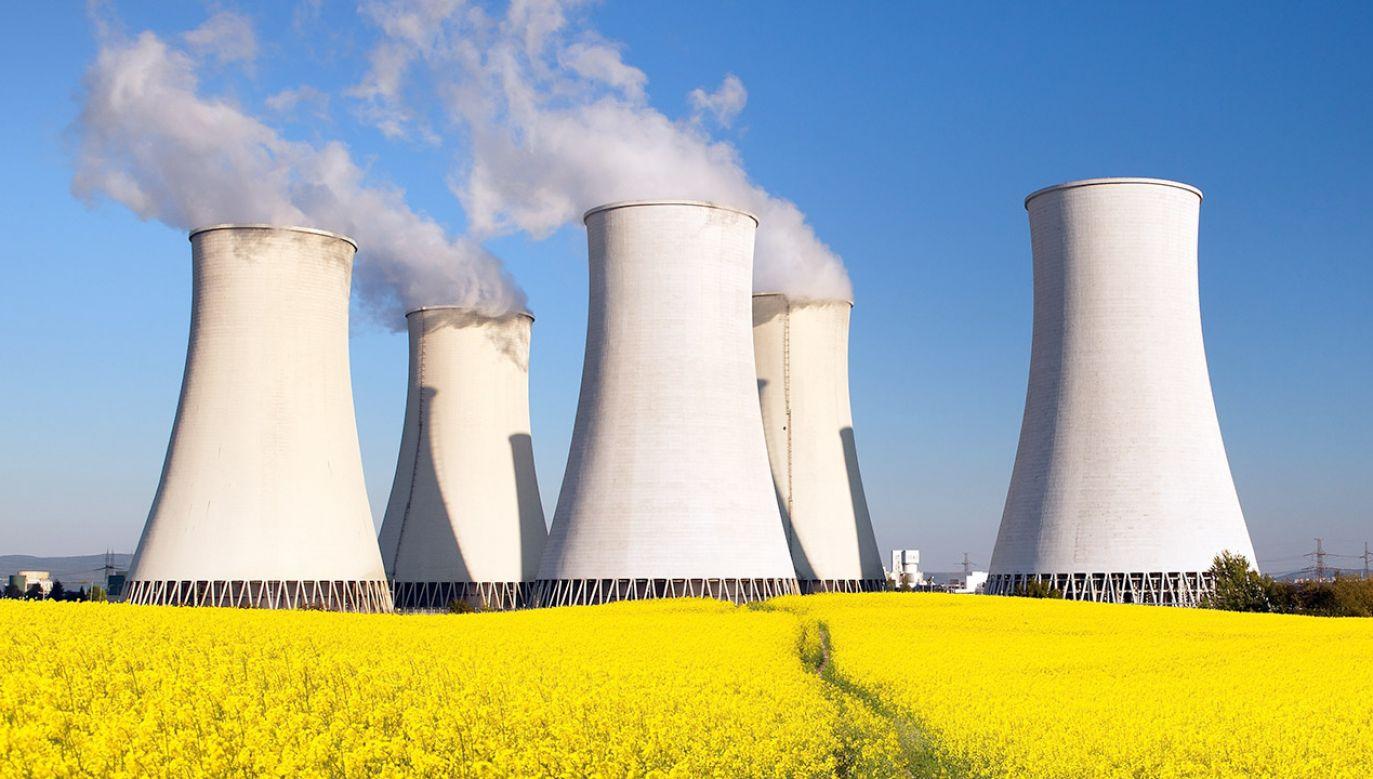"""""""W ciągu dwudziestu lat powinniśmy zbudować sześć reaktorów"""" (fot. Shutterstock/Daniel Prudek)"""
