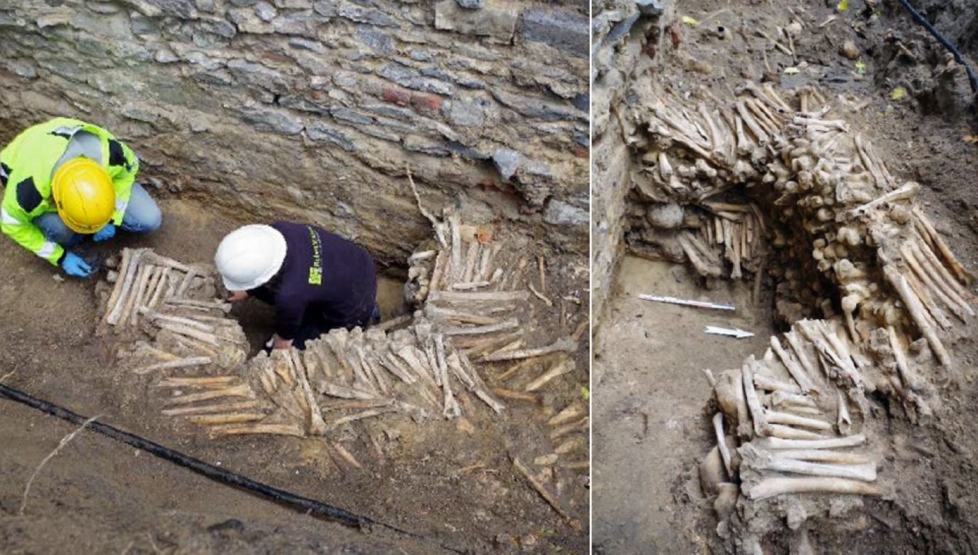 Znalezisko nie stanie się atrakcją turystyczną – kości zostaną usunięte (fot. FB/Ruben Willaert)