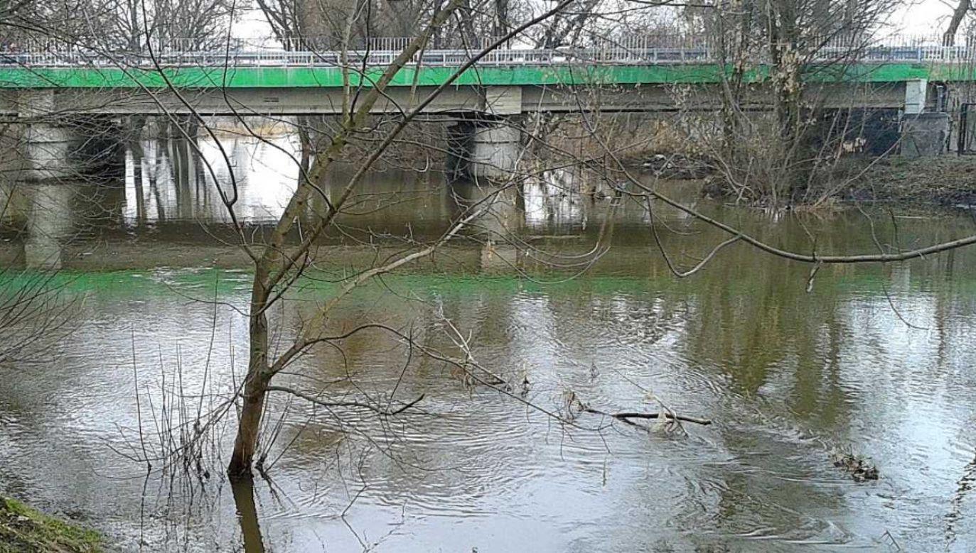 Spodziewany jest wzrost poziomu wody powyżej stanu alarmowego  (fot. Wikimedia Commons/Emptywords)