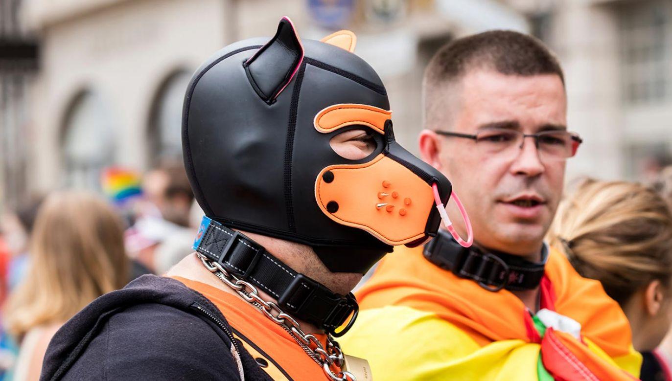 Czarnek mówił też o postulatach organizatorów parady (fot. Shutterstock/WhiteHaven, zdjęcie ilustracyjne)