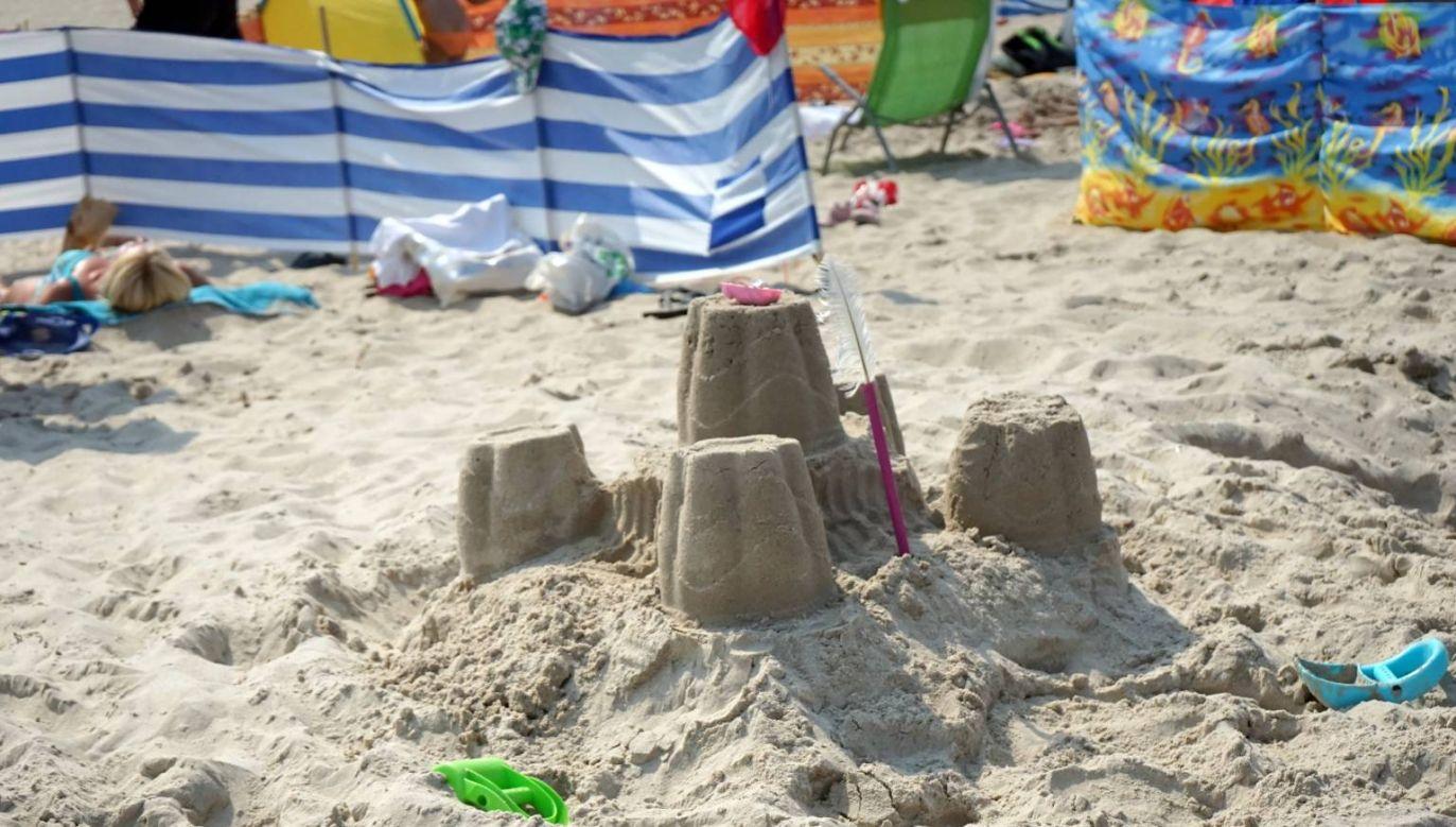Z powodu zakwitu sinic plażowicze nie moga wchodzić do wody (fot. PAP/Marcin Bielecki)