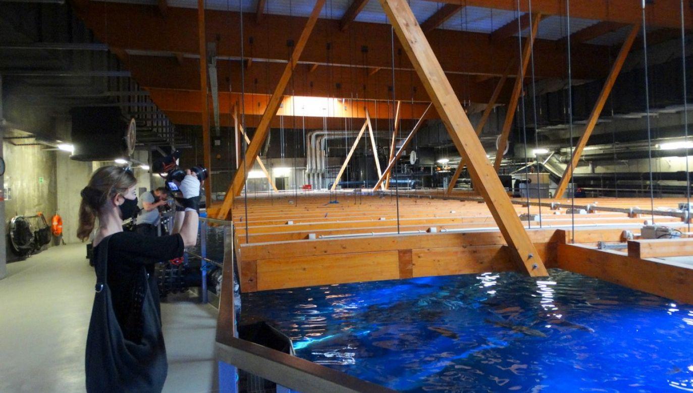 Afrykarium to pierwsze w Polsce oceanarium i jedna z największych atrakcji turystycznych w kraju (fot. Twoje Info)