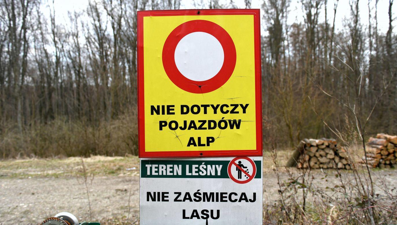 Photo: PAP/Darek Delmanowicz