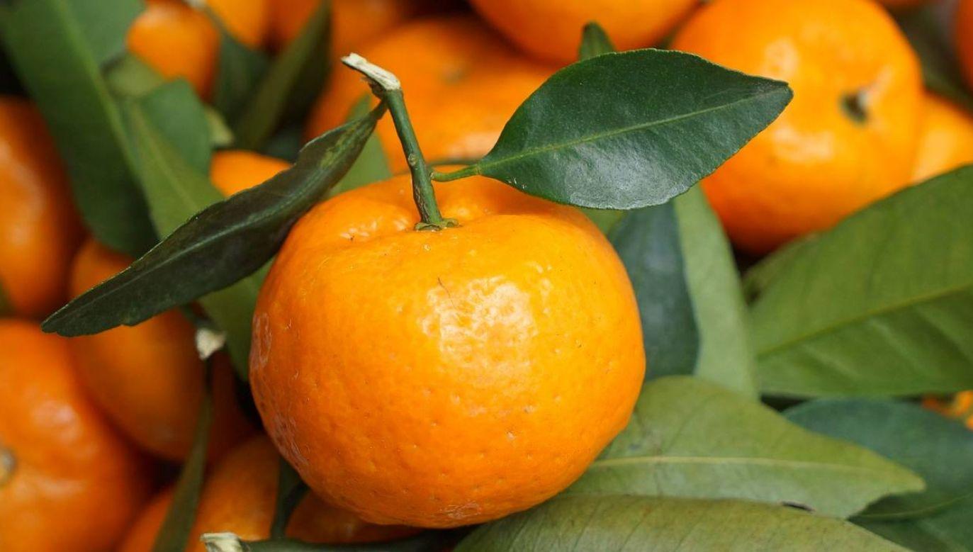 Hybrydowa odmiana mandarynki nadorcott jest chroniona unijnym prawem (fot. Pixabay)