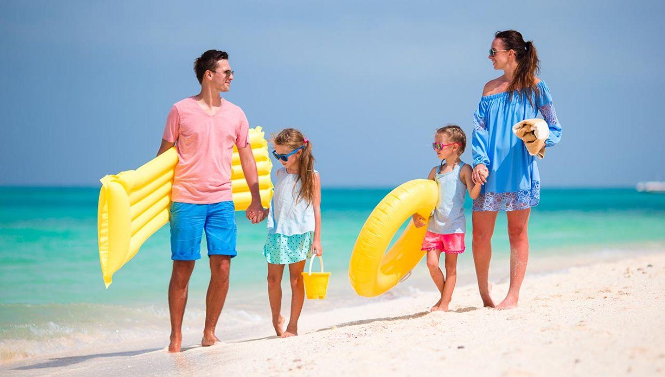 Tegoroczne wakacje będą bardzo trudne dla branży turystycznej (fot. Shutterstock/TravnikovStudio)