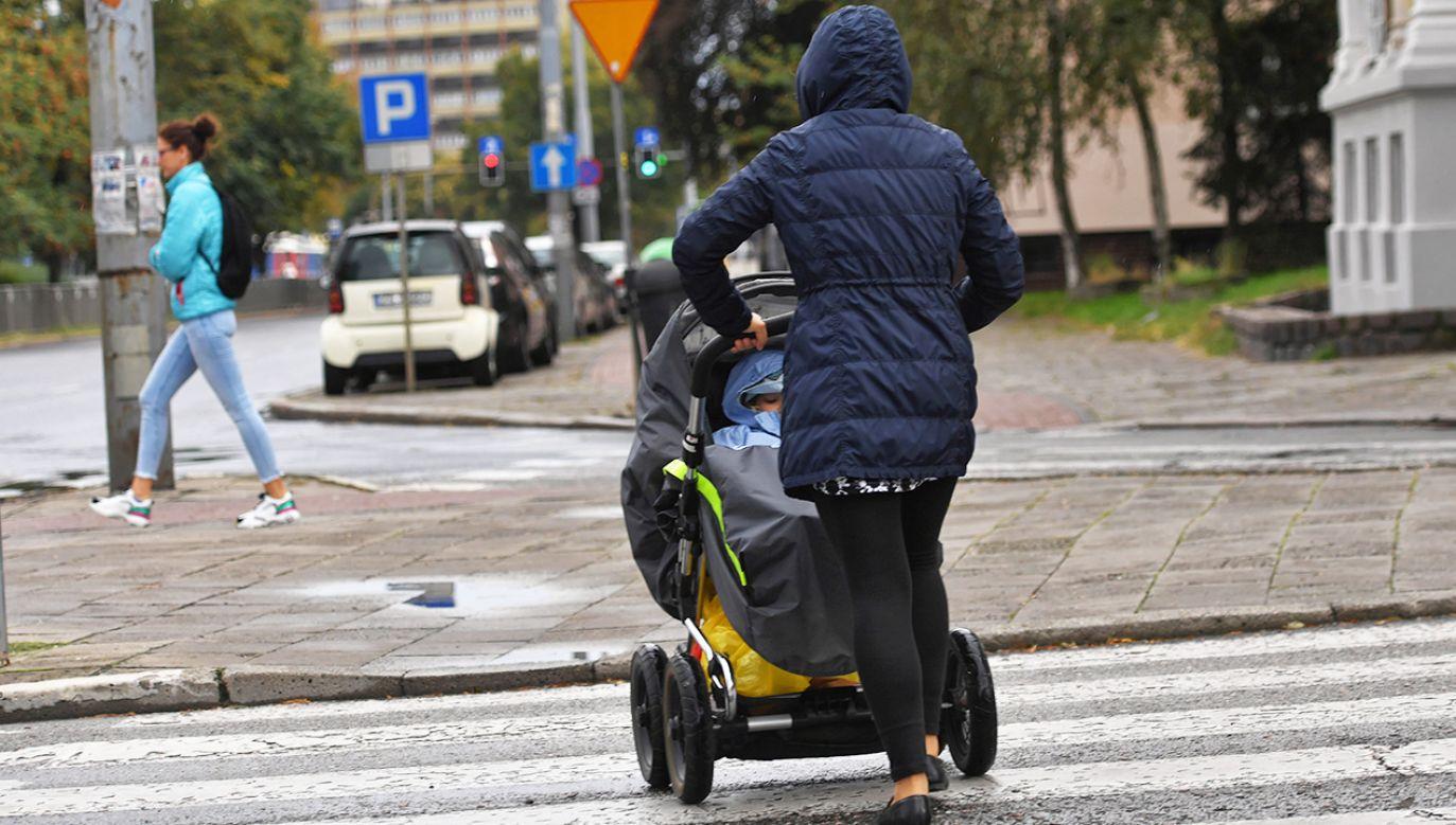 Wiatr może osiągać prędkość do 100 km/h (fot. PAP/Marcin Bielecki)