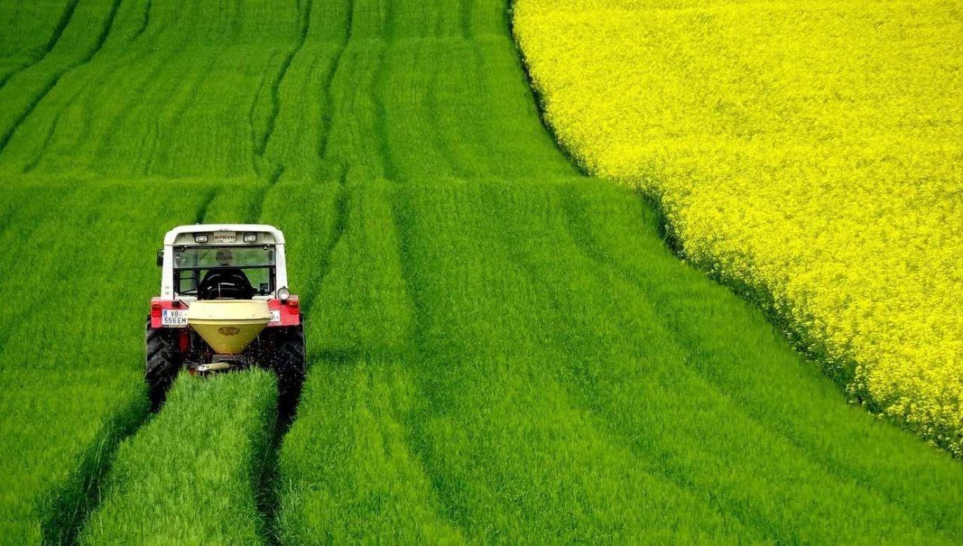 Rolnicy mogą składać wnioski się wyłącznie przez platformę eWniosek Plus (fot. Pixabay)