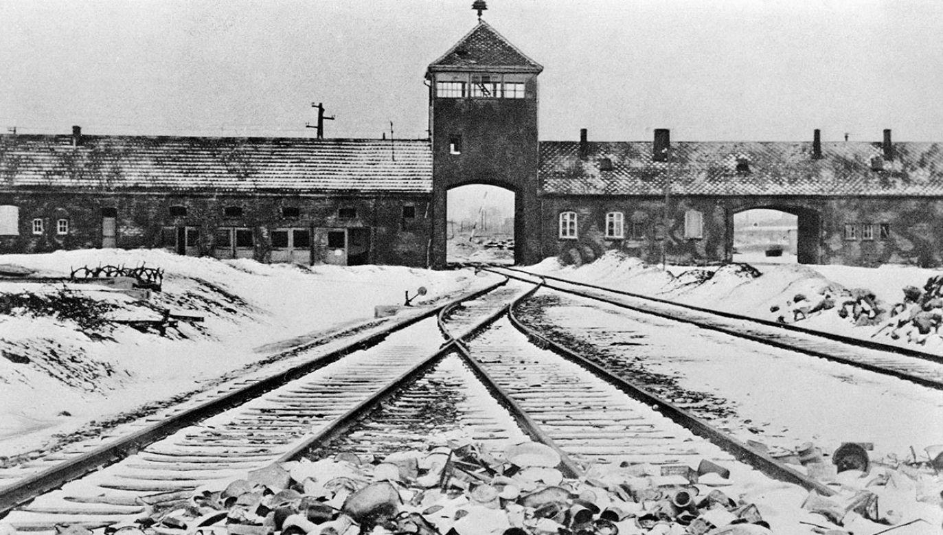 Spośród deportowanych doktor Mengele wybrał bliźnięta do swoich okrutnych eksperymentów (fot. Getty Images)