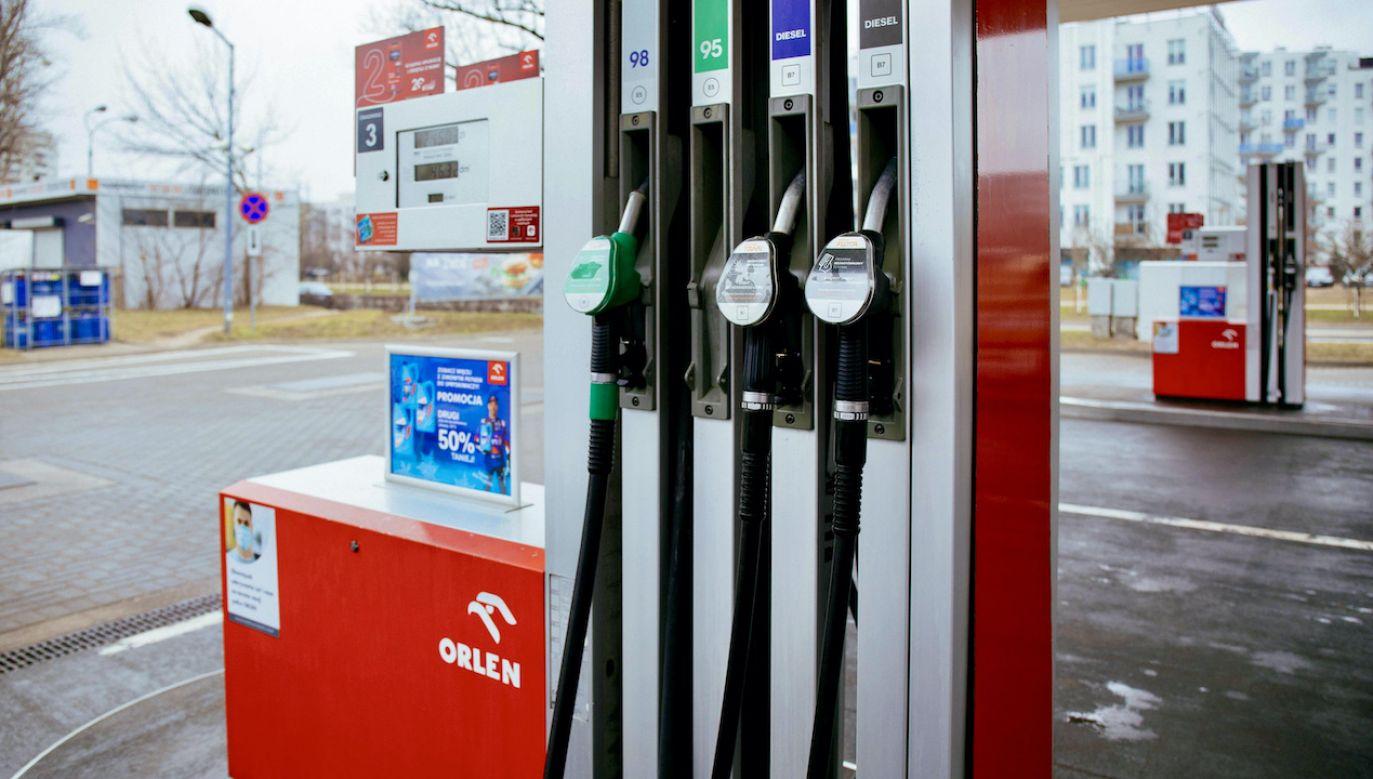 Prognozy cen na stacjach paliw (fot. arch.PAP/Albert Zawada)