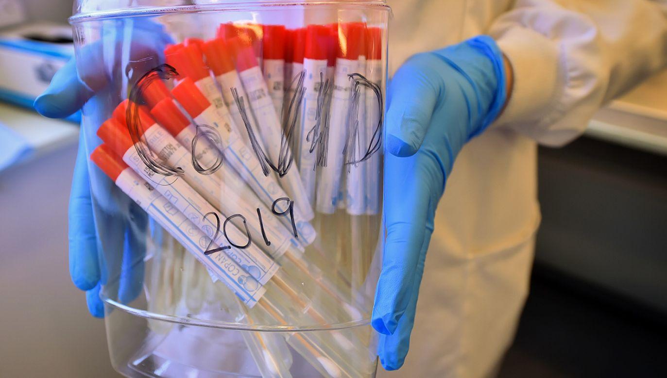 Celem projektu prowadzonego przez Agencję Badań Medycznych jest włączenie polskich ośrodków naukowych do ogólnoświatowych badań nad skuteczną szczepionką na koronawirusa (fot. Ben Birchall/PA Images via Getty Images)