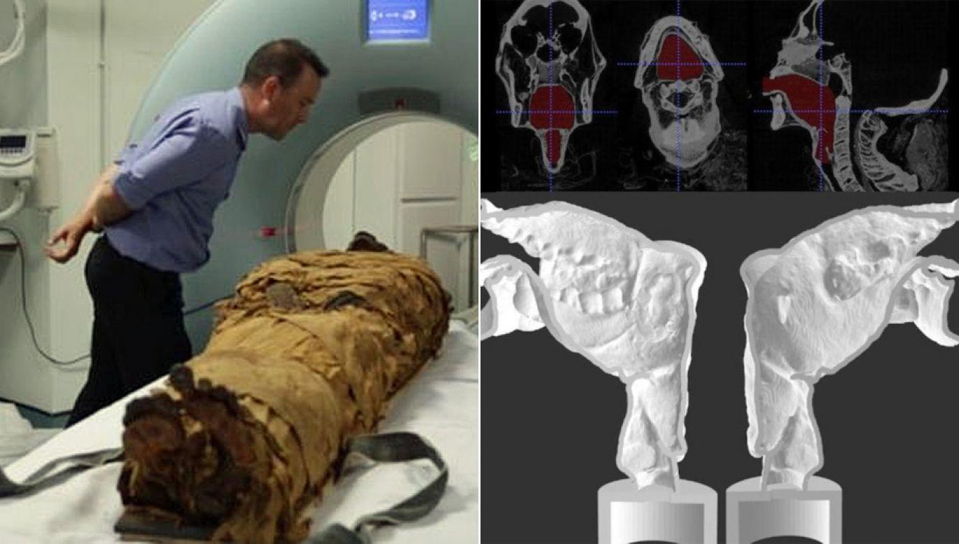 Naukowcy odtworzyli trójwymiarowy układ narządów mowy (fot. Leeds Museums and Galleries)